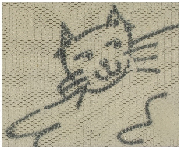 "A close-up photograph of the smiling cat from the Magna Doodle screen, included as an ""after"" shot in comparison with the previous image. There is very little visible difference between the two cat drawings."