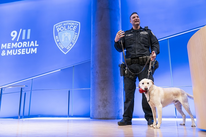A man in a police uniform stands and gestures on an auditorium stage with a yellow Labrador standing alongside him, with a red dog toy in its mouth.