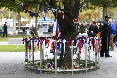 Red, white, and blue flowers and ribbons encircle the Survivor Tree as a tribute to the victims of a bicycle path attack in lower Manhattan.